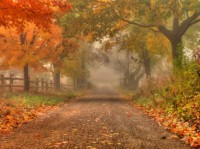 5 rad jak vyzrát nad podzimní únavou