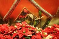 5 zásad, abych o Vánocích nepřibrala