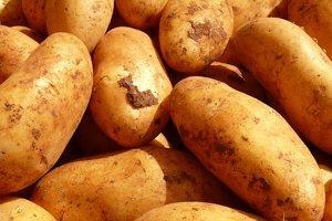 Síla brambor aneb zázraky v naší kuchyni